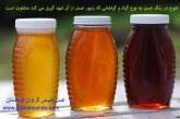 چرا رنگ عسل ها با هم متفاوت هستند؟!
