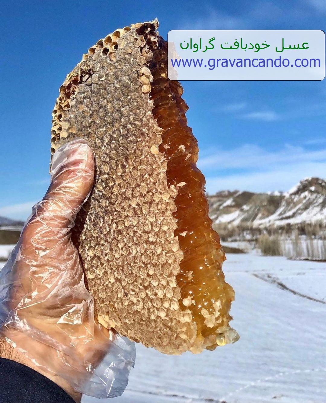 عسل خودبافت گراوان