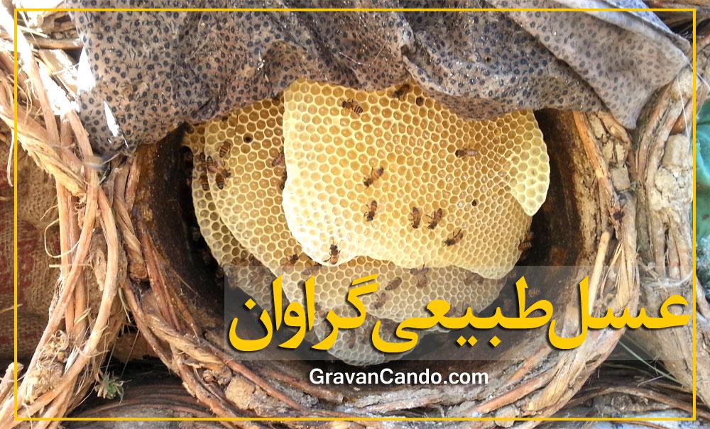 عسل طبیعی کردستان