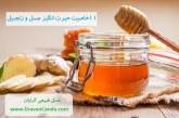 ۱۱ خاصیت حیرت انگیز عسل و زنجبیل را باید بدانید؟