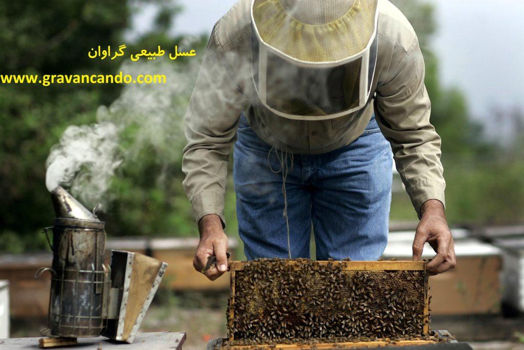 خرید عسل طبیعی از زنبوردار