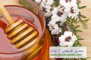 فروش عسل مانوکا در تهران