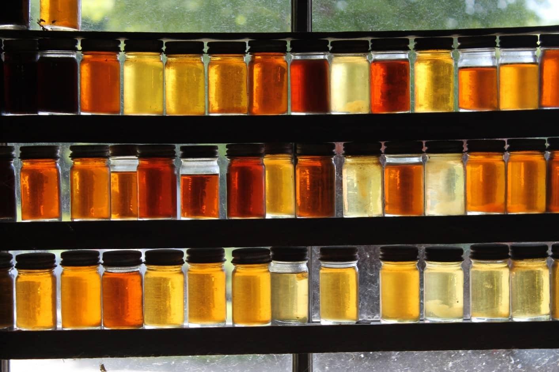 عسلها به علت تفاوت شهد گیاهانی که زنبور میخورد، رنگهای متفاوتی دارند